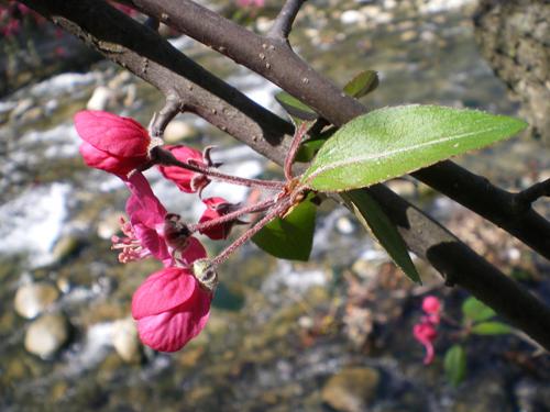 Празникът Пролетно равноденствие
